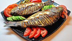 Riba przena